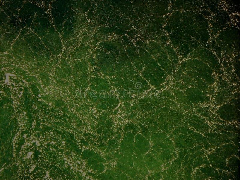 绿色打旋的水细节背景 库存图片