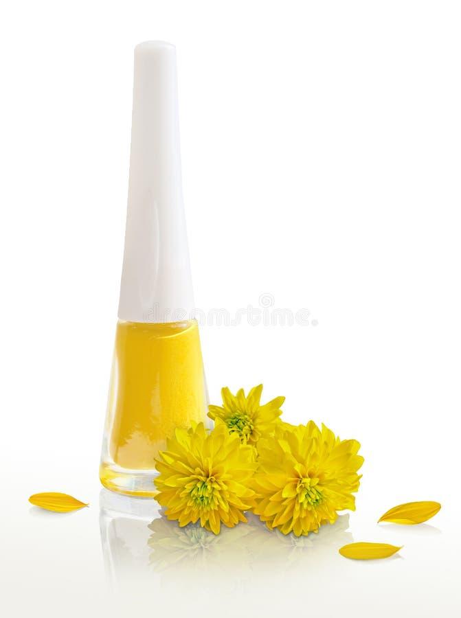 黄色指甲油和黄色花,瓣 免版税图库摄影