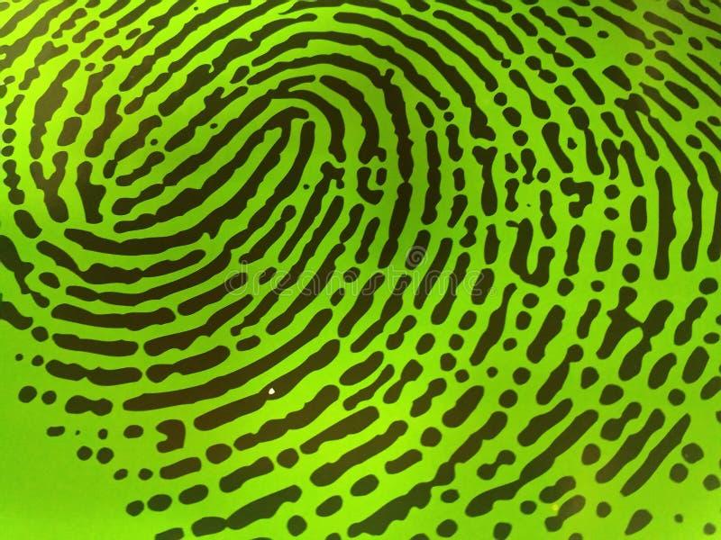 绿色指纹 免版税库存照片