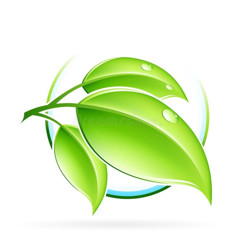 绿色新芽 库存例证