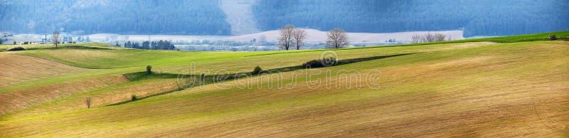 绿色春天小山在斯洛伐克 4月晴朗的乡下全景 免版税库存照片