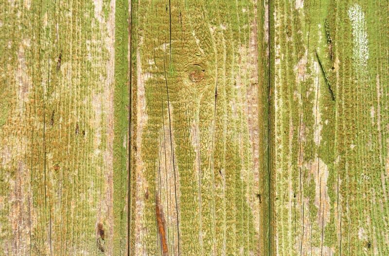 绿色木盘区背景特写镜头 减速火箭的用木材建造的背景特写镜头 免版税图库摄影