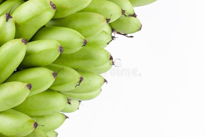绿色未加工的蛋香蕉或蛋香蕉在白色被隔绝的背景健康Pisang Mas香蕉果子食物 图库摄影