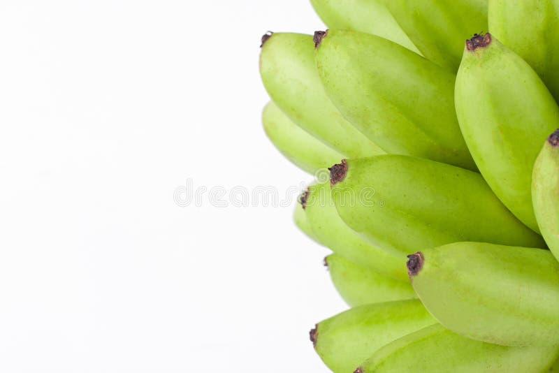 绿色未加工的蛋香蕉或蛋香蕉在白色被隔绝的背景健康Pisang Mas香蕉果子食物 库存图片