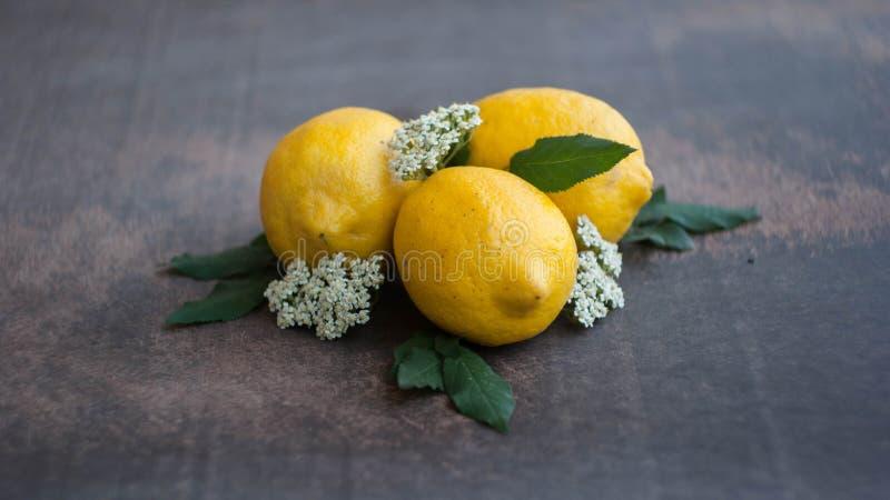 黄色柠檬和花 库存照片