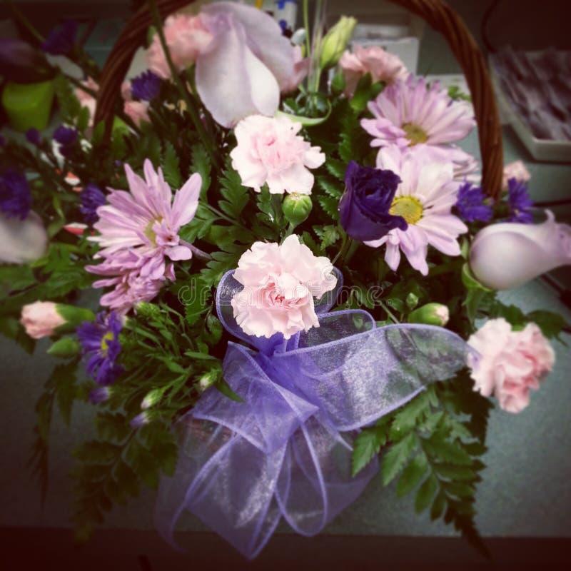 紫色桃红色花 库存图片