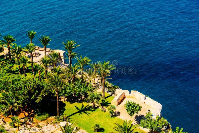 绿色棕榈树和蓝色海洋鸟瞰图  免版税库存图片