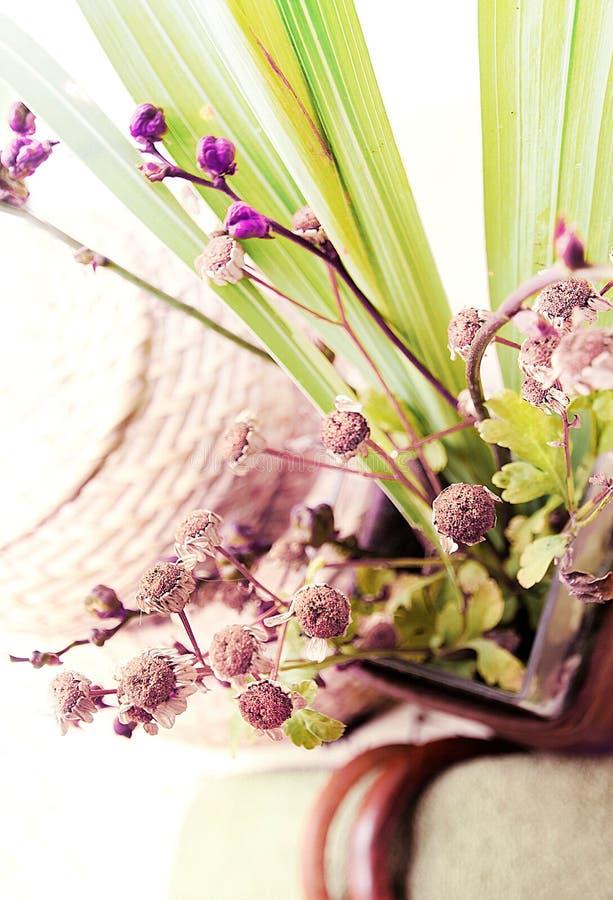 绿色植物和紫罗兰色花 免版税库存图片