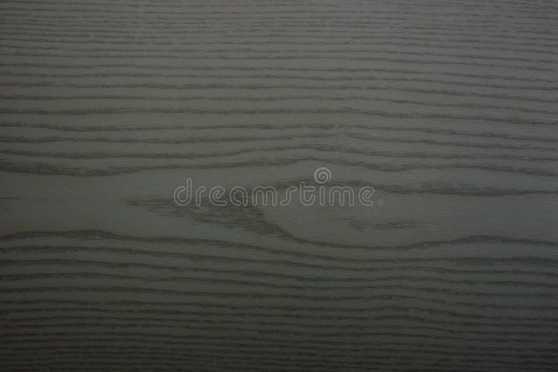 绿色橡木五谷纹理 库存图片