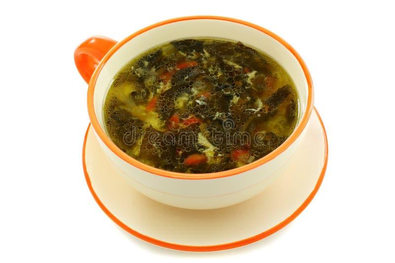 Download 绿色汤用栗色。 库存照片. 图片 包括有 红萝卜, 黄色, 鸡蛋, 栗色, 烹调, 没人, 叶子, 春天 - 30326780
