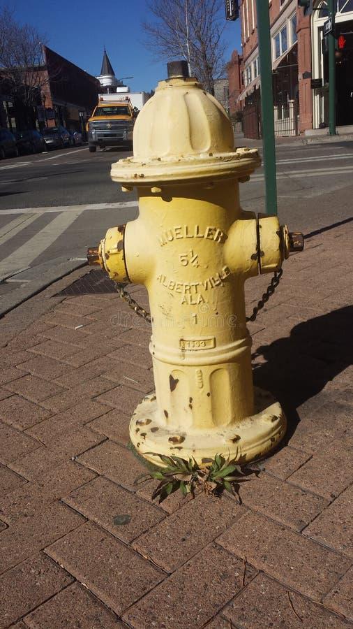 黄色消防龙头 图库摄影
