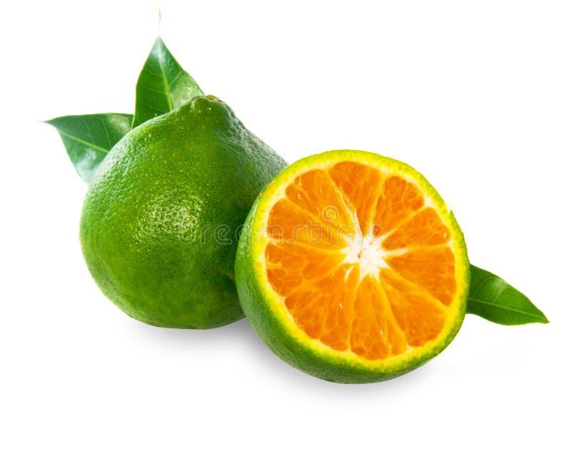 绿色甜蜜桔 免版税库存图片