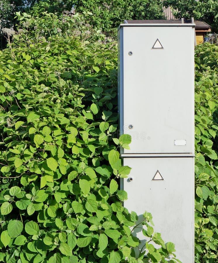 绿色电能的概念 免版税库存照片