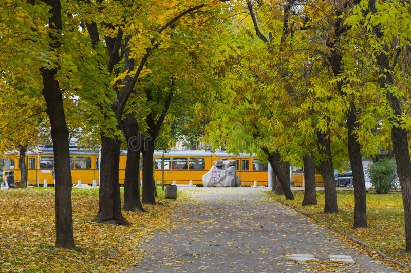 黄色电车轨道和秋天胡同在索非亚,保加利亚 库存图片