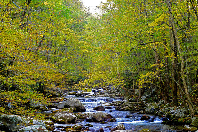 黄色留给框架一条小山小河 库存照片