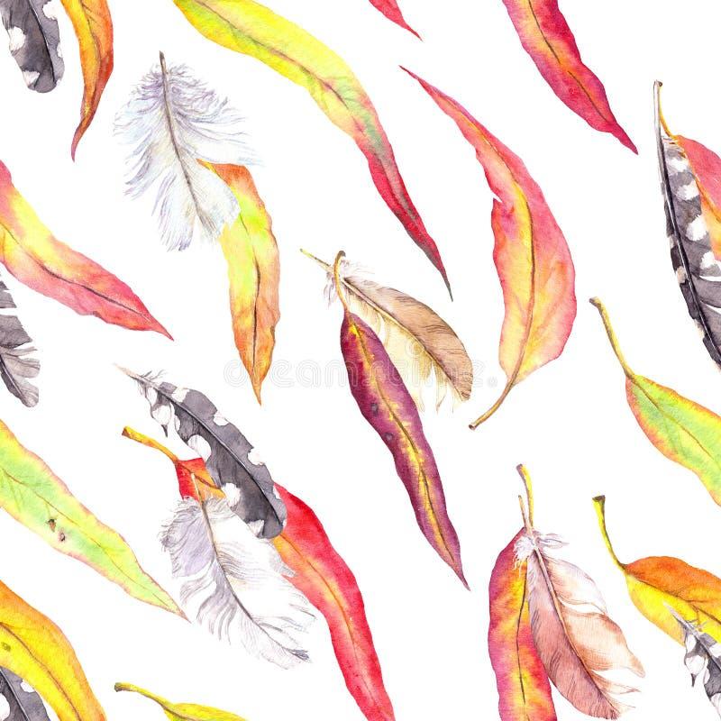 色的叶子,羽毛 无缝秋天的模式 水彩-葡萄酒样式 库存图片