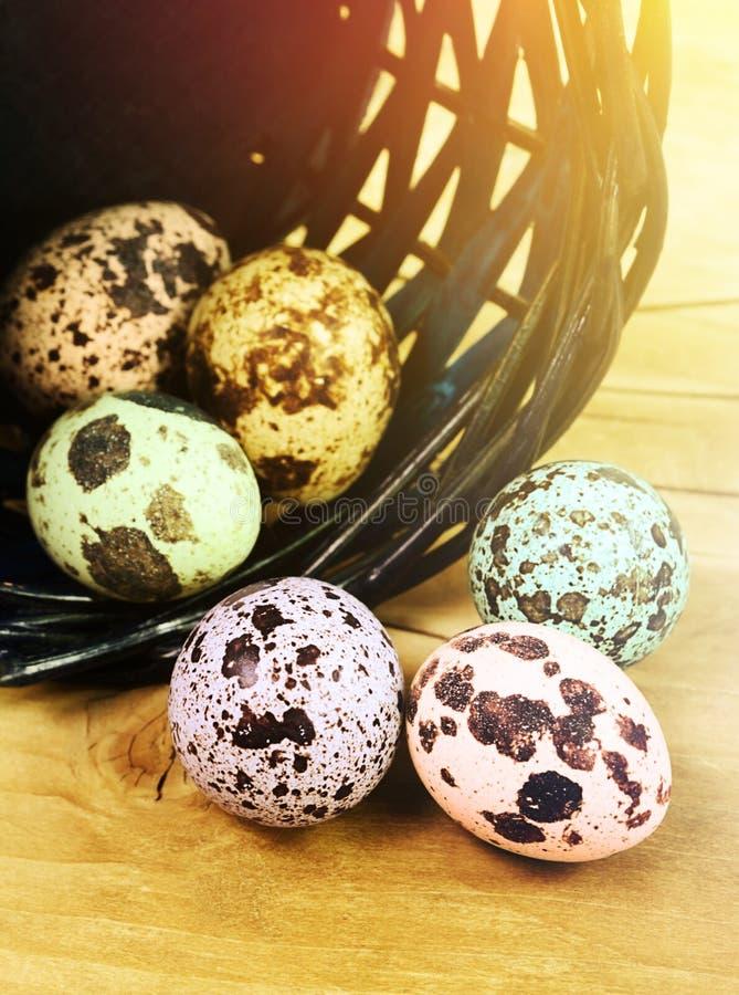 色的呈杂色的鸡蛋 库存照片