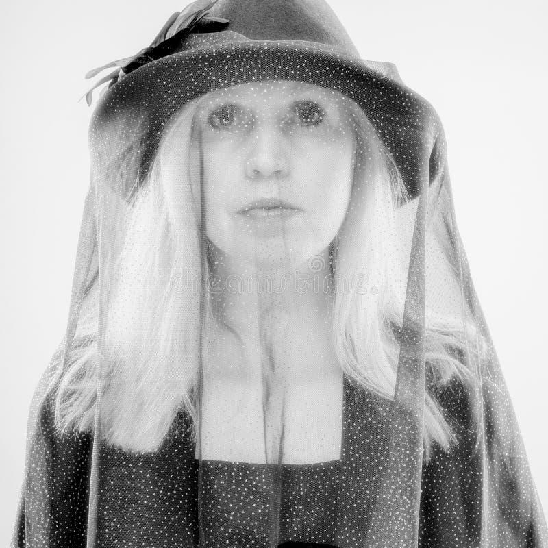 黑色的寡妇 图库摄影