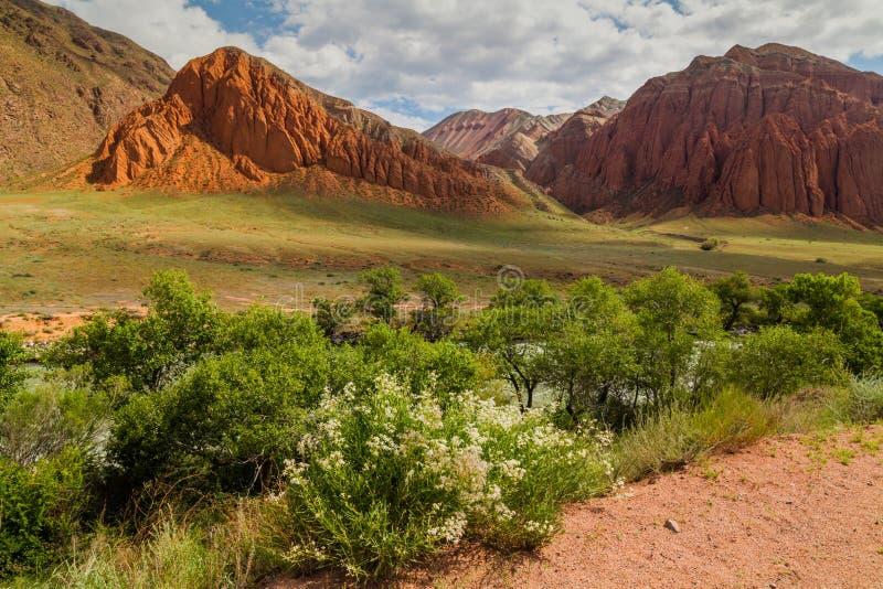 色的山风景在Kokemeren河,克孜勒Oi,吉尔吉斯斯坦附近的 库存图片