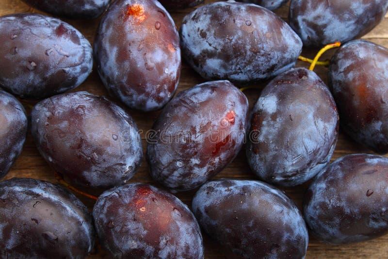 Download 紫色的李子 库存照片. 图片 包括有 空白, 时间, 本质, 食物, 自治权, 木头, 果子, 节食, 图象 - 59110154