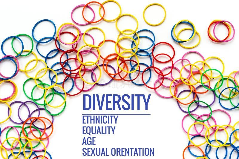 色的概念分集前面灰色对象一 混合在白色背景的五颜六色的橡皮筋儿以文本变化,种族,平等,年龄,性意向 免版税库存图片