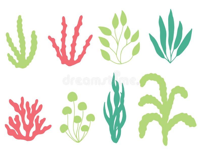 色的珊瑚和海草传染媒介剪影 查出在白色 皇族释放例证