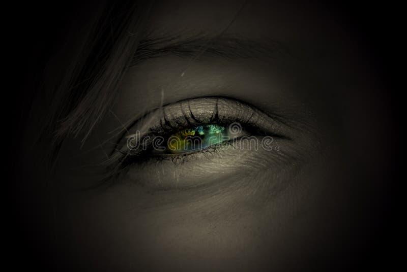 色的眼睛 库存图片