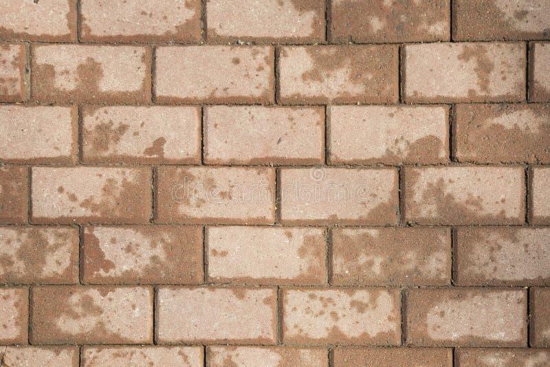 色的石头铺磁砖路面纹理 库存照片