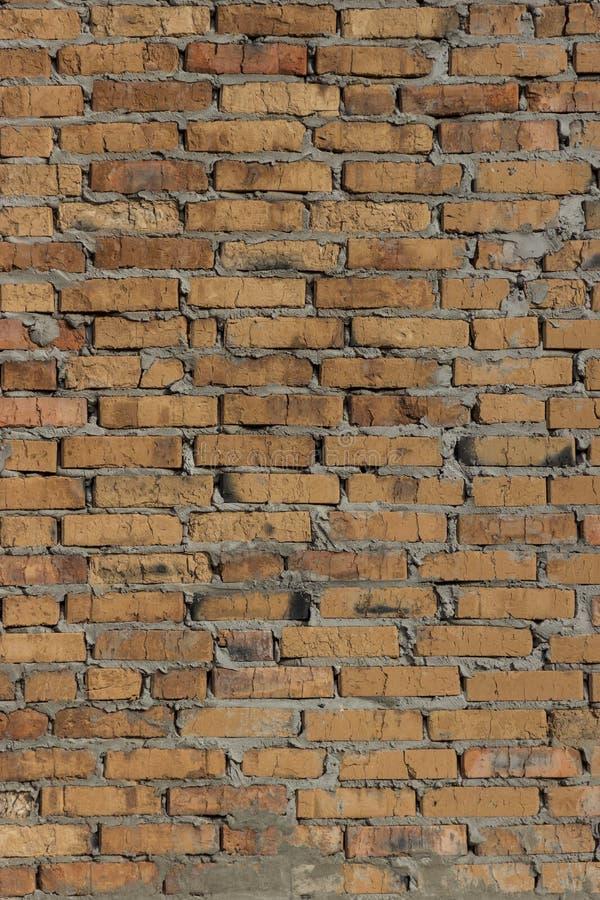 色的砖砌背景 免版税库存图片