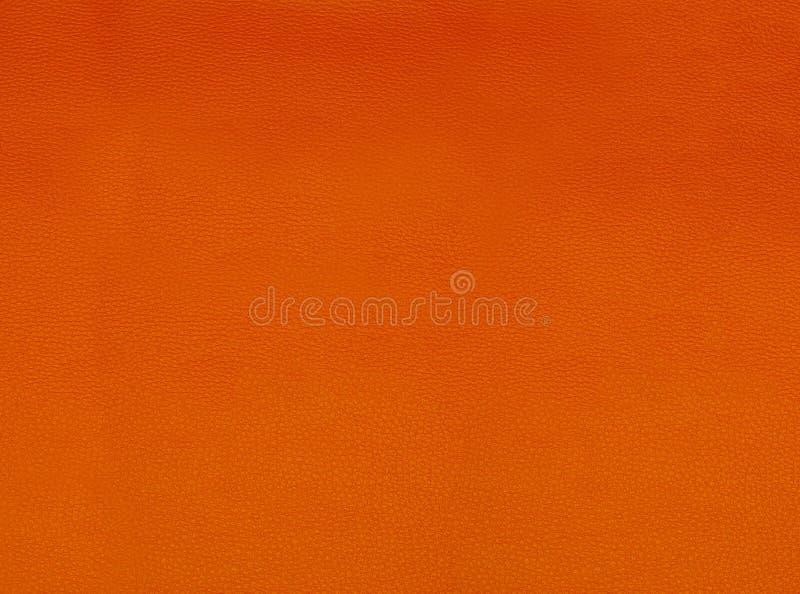 色的结构皮肤 免版税库存照片