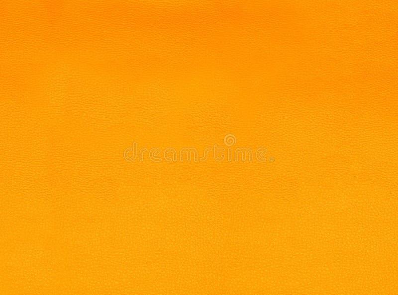 色的结构皮肤 免版税库存图片