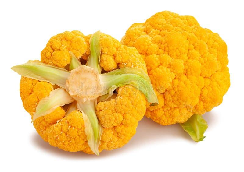 色的花椰菜 免版税库存图片