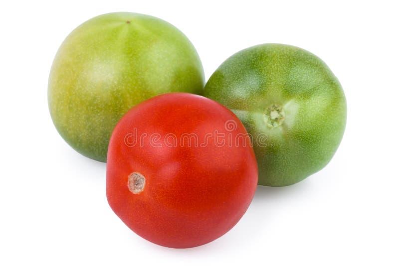 绿色的蕃茄红色和 免版税库存照片