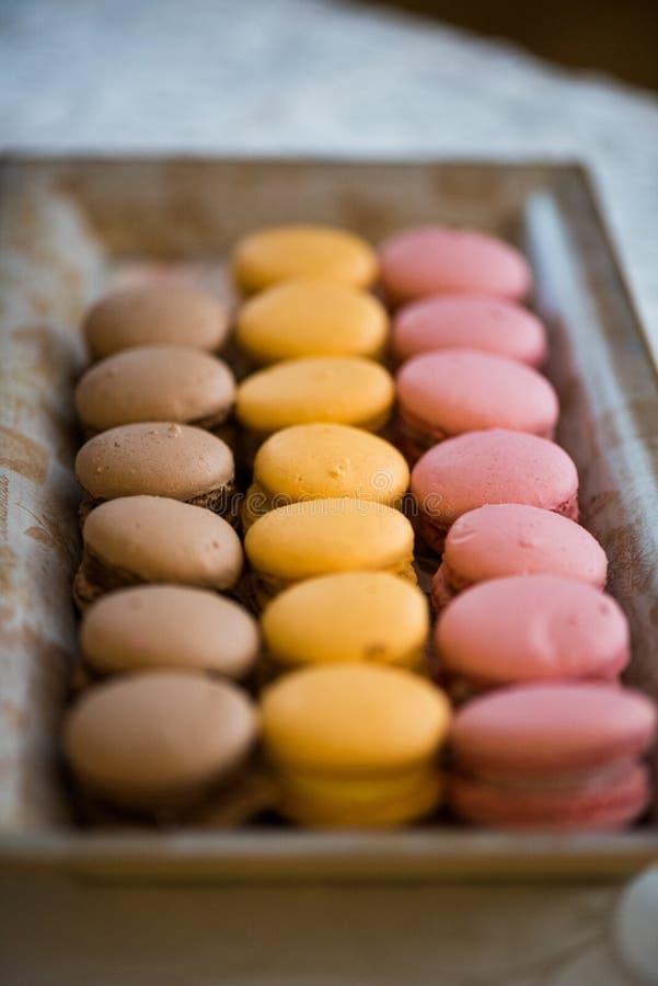色的蛋白杏仁饼干 库存照片