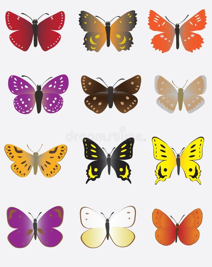 色的蝴蝶收藏 库存例证