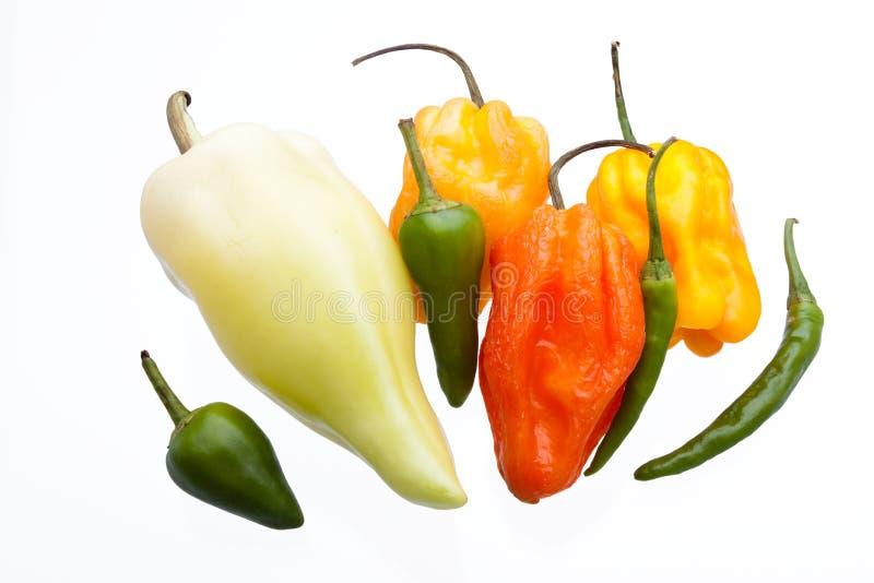 色的辣椒混合 库存图片