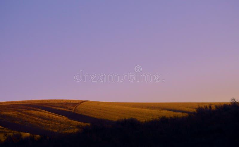 紫色的领域 免版税库存图片