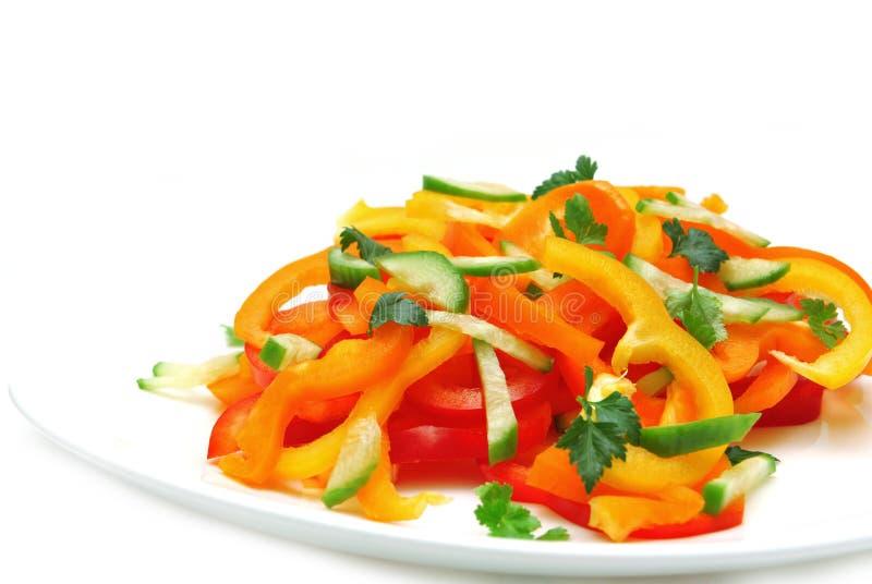 色的黄瓜多胡椒沙拉 免版税库存照片