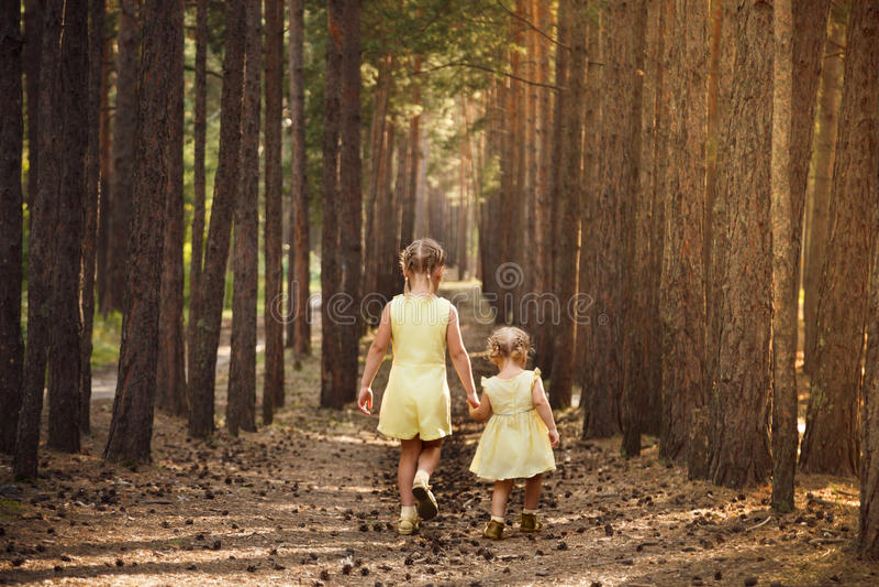 黄色礼服的两个姐妹审阅握手的森林 库存图片