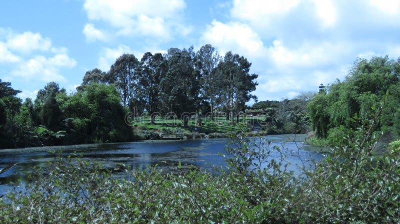 绿色秀丽土地 库存图片