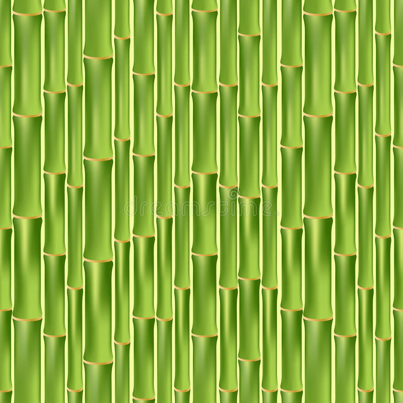 绿色竹无缝的纹理 库存例证