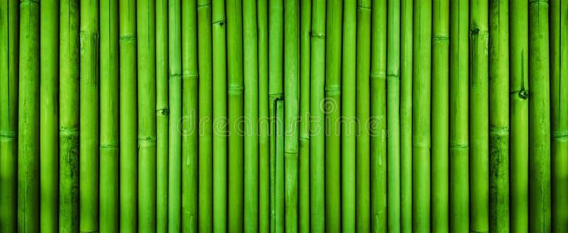 绿色竹篱芭纹理,竹纹理背景 免版税库存图片