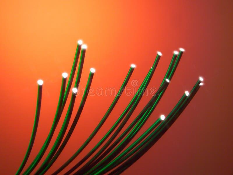 绿色纤维光学钢缆 免版税库存图片