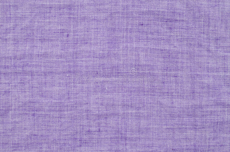 紫色纹理 库存照片