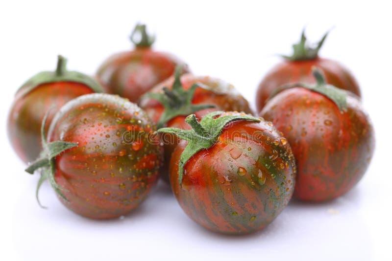 绿色老虎蕃茄是湿的 库存照片