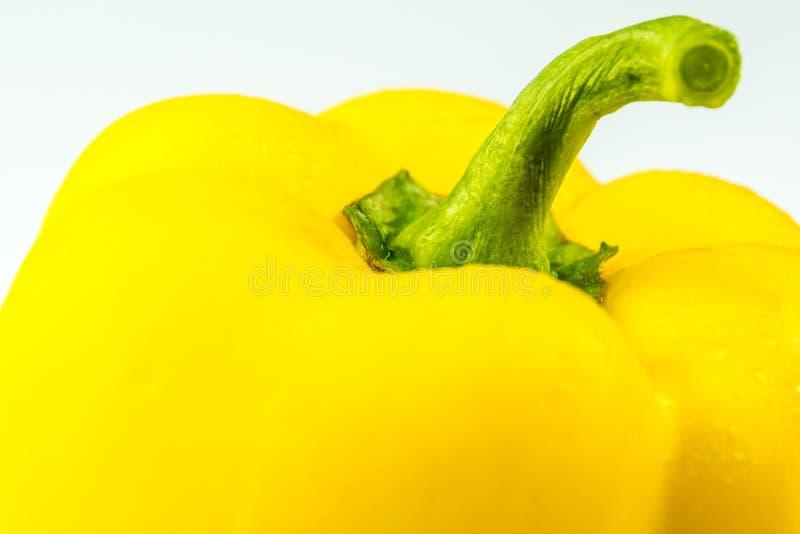 黄色胡椒特写镜头在白色背景的 库存图片