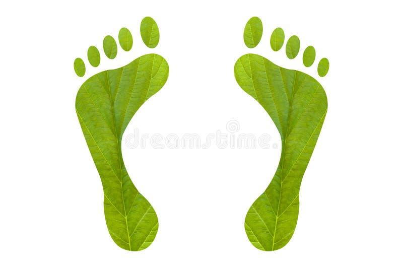 绿色脚印刷品人 皇族释放例证