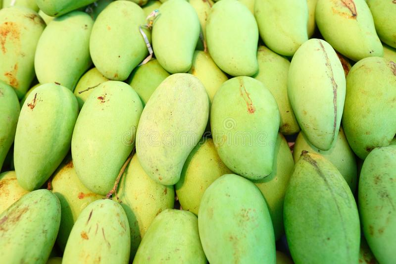 绿色芒果 库存图片