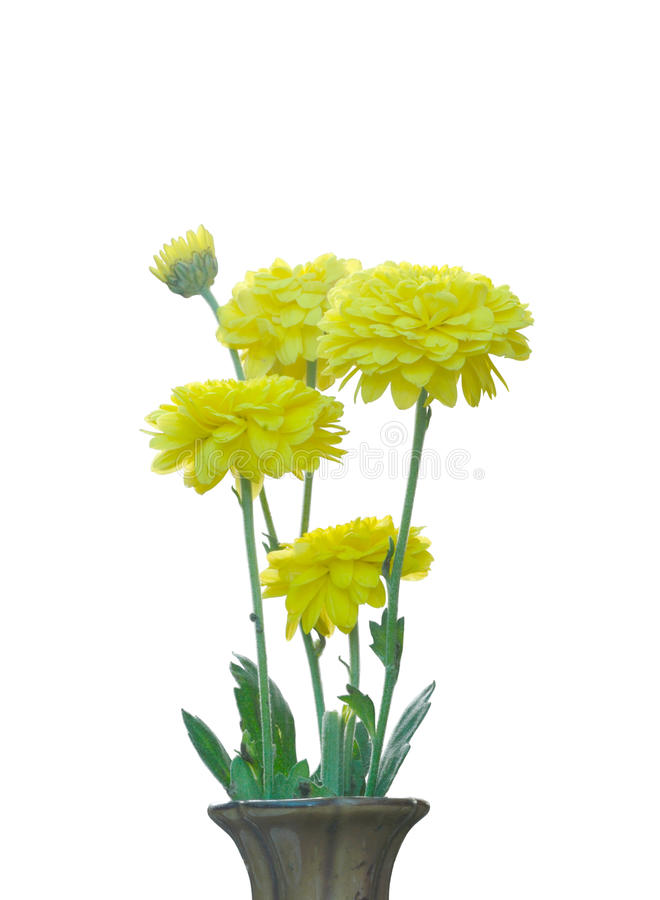 黄色花花束  免版税图库摄影