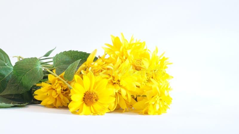 黄色花花束 图库摄影